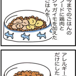 ★4コマ漫画「手本」