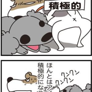 ★4コマ漫画「本当は」