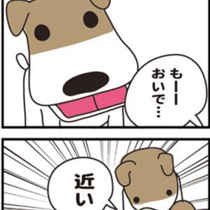 ★4コマ漫画「一緒に」
