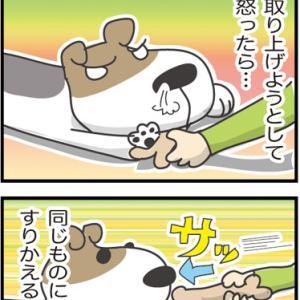 ★テレビでやっているしつけ方法が全て合っているわけじゃないです・・  4コマ漫画「だめ犬のしつ」
