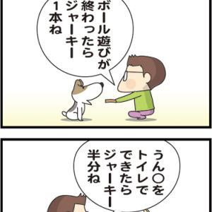 ★ワイフより犬だね・・  4コマ漫画「大切な約束」