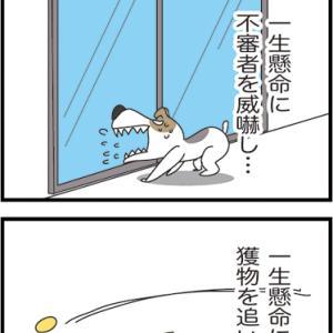 ★こんな風に生きるのがいいのかもね・・  4コマ漫画「一生懸命」