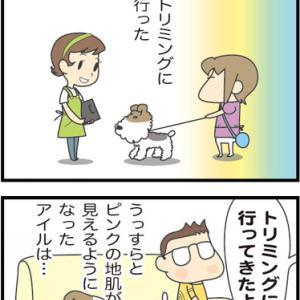 ★鶏胸肉ばかり食べてるから?・・  4コマ漫画「そう見えるんだもん」