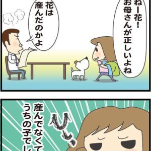 ★お母さんと呼ばれてもいい時・・  4コマ漫画「はなママさんち」