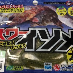 【パワーイソメは本当に釣れるの?】本物のアオイソメと使い比べてみた結果…