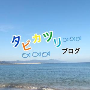 【実釣インプレ】DAISO【メタルバイブ】100円で手に入る最高のメタルバイブ