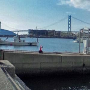 【兵庫】江井ヶ島港の釣り場情報 釣れる魚や釣り方・ポイントをご紹介