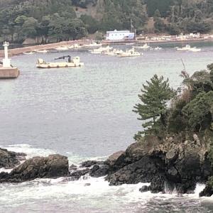 【京都】舞鶴田井漁港の釣り場情報 釣れる魚や釣り方・ポイントをご紹介