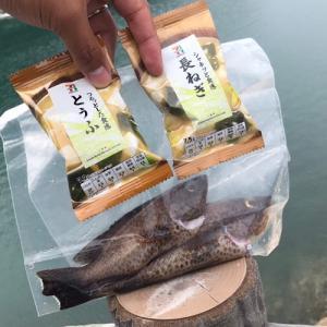 【キャンプ飯】『釣った魚で即席贅沢みそ汁』の作り方。簡単・美味い・安いの三拍子です。