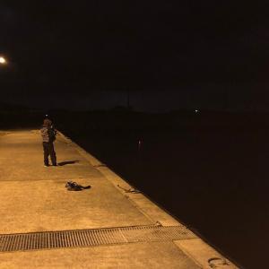 釣行レポートvol.12【初冬のライトゲームで爆釣!】夜のライトゲームが楽しすぎた。