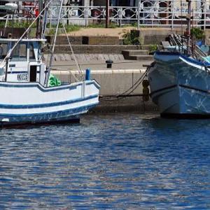 「船釣り」船酔いしない為の3つの対策と船酔いした時の対処法をご紹介
