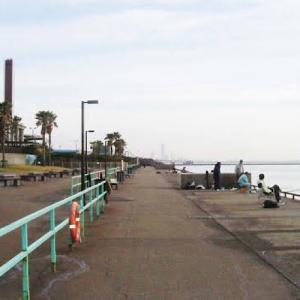 【兵庫】「鳴尾浜臨海公園」の釣り場情報 釣れる魚や釣り方・ポイントをご紹介
