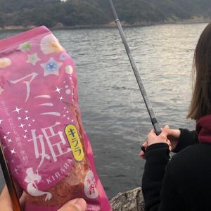 手軽にフカセ釣りが楽しめる『アミ姫を使ったなんちゃってフカセ釣り』をご紹介。