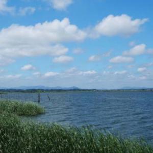 【茨城県】涸沼・涸沼川の釣り場情報と釣れる魚や釣り方をご紹介
