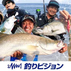 釣り初心者こそ「釣りビジョンVOD」がおすすめ!上達が早くなります。