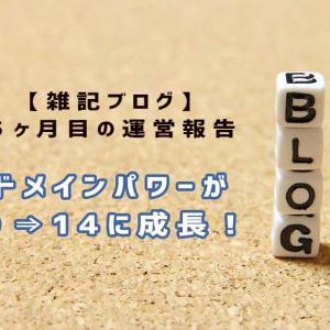 【ブログ5ヶ月】80記事で雑記ブログはどこまで伸びるか?【PV・収益の変化】