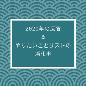 【2020年の反省】今年やりたいことリストの消化率