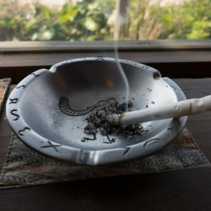 口腔喫煙・クールスモーキングを開始してから吸った煙草【その7】