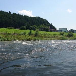 那珂川本流はアカが飛び