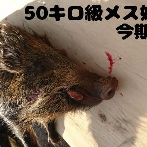2月2日 人間vs猪