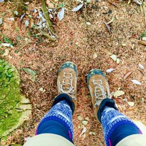 普通の靴下で登山に行った結果、もったいないことに(事後の画像あり)