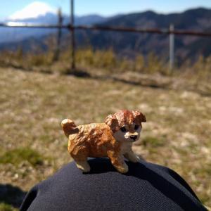 【大野山】富士山の絶景を楽しむ登山。運動不足でも行けるハイキングコースとアクセス