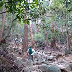 【筑波山】もはや行楽地! 最も低い百名山は見どころたくさん