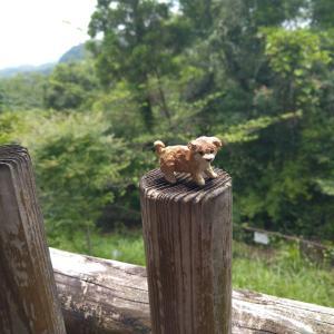 【草戸山】高尾山口から静かな登山が楽しめる! 隠れ家的なプチ縦走コース