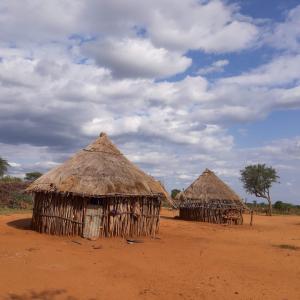 ハマル族の村は静かであった