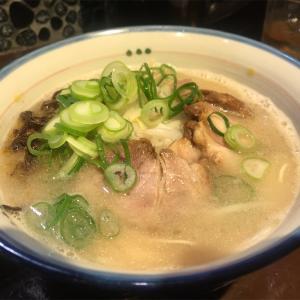 【麺の坊 砦@渋谷】一風堂の愛弟子が作る絶品豚骨ラーメン
