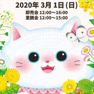 にゃんともニャンズマーケット7!猫好きさん大興奮!可愛い猫グッズがいっぱい。里親会もやってます!