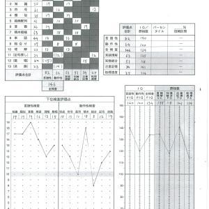 次男のWISC-Ⅲ知能検査結果!