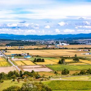 市街化調整区域で農地転用許可無しで、雑種地に変更できるのか