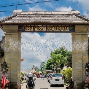 【バリ島】大原探検隊ツアーで行くパンリプラン村inPenglipuranBangli