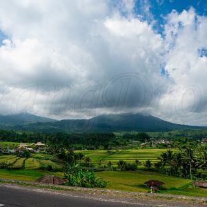ジャティルウィライステラス(2012年ユネスコ世界文化遺産登録)inバリ島