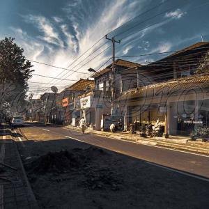 バリ島ウブドのモンキーフォレスト通り2020年コロナ禍の今を現状レポート!