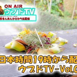 ウブドTV-Vol.06の裏話|和るんあんかさから生配信!ニューノーマル発動が間近なバリ島から