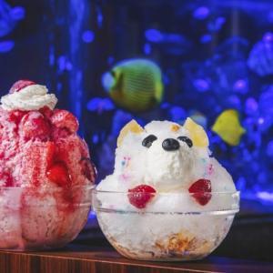 【新宿駅直結】1万匹の熱帯魚が泳ぐ「アクアリウムカフェ新宿店」が8月6日ニューオープン!