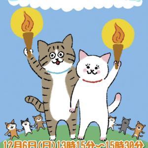 【とーち保護猫の譲渡会】「新宿御苑前どうぶつ病院」にて保護猫譲渡会が12月6日(日)開催!