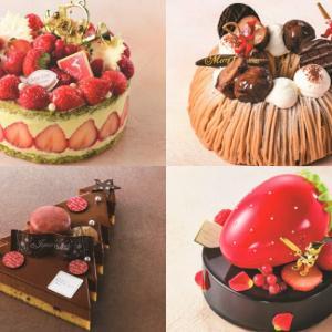 【京王百貨店 新宿店】限定販売を含む計50型を展開『京王のクリスマスケーキ』が10月1日より受付を開始