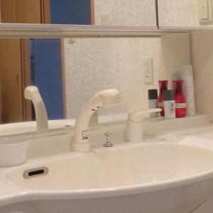 100円shopの人気商品で我が家の洗面所は毎日キレイ!リアルな収納と掃除