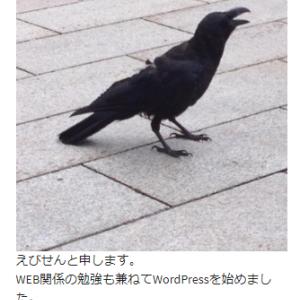 【すぐにできる!】WordPressプロフィール欄の設定方法