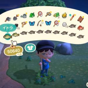 【あつ森】イトウとチョウザメの釣り方