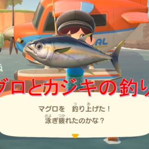 【あつ森】マグロとカジキの釣り方