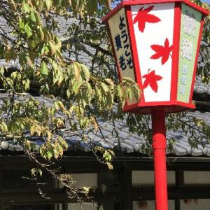 * 滋賀県・長浜の旅 養老の滝 *