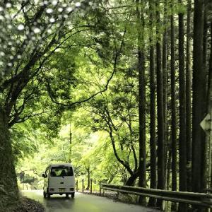 * 移動自粛解除後に京都・高雄に行ってきました~ ①☆