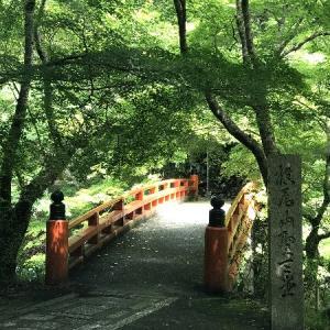 *京都・もみぢ家別館 川の庵 観光(西明寺)*