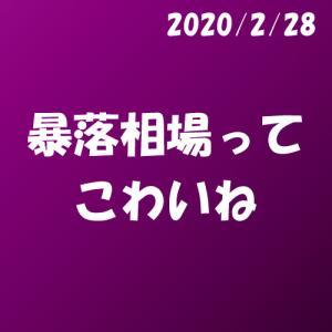 暴落相場ってこわいね_2020.2.28