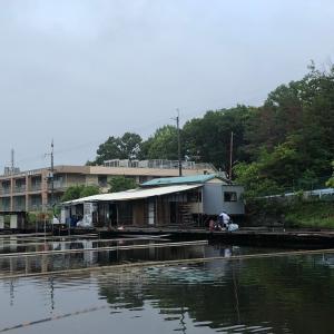 へらぶな釣り〜デビュー戦