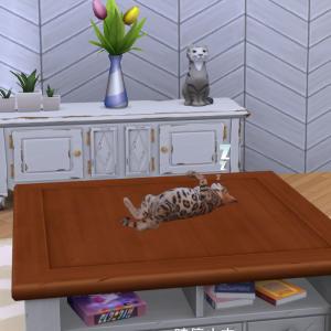 【レガシーチャレンジvol.32】まだまだ続く猫生活